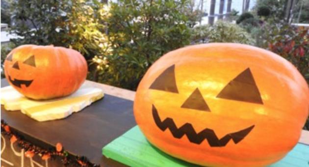 今年のハロウィンはどんな思い出を作ろう♪お子さんと一緒に近場のハロウィンイベントに参加してみてはいかがですか?